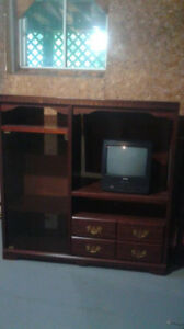 Entertainment stand ideal for cottage or rec room