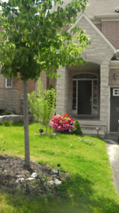 Short Term Rental, 4 Bedroom House in  Thornhill Woods