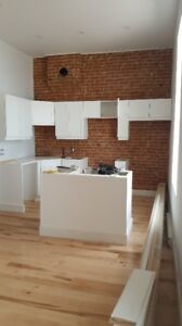 Fully Renovated 1 Bedroom Apartment (Sept 1)