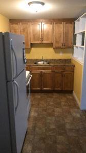 1 Bedroom Apartment. All Utilities, Appliances; WIFI !