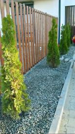Gardeners&Landscapers&Handyman