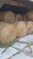 2015 4x4 Round Bales For Sale