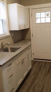 Walk Downtown - Fully Renovated 1-Bedroom Apt.- $735/Month