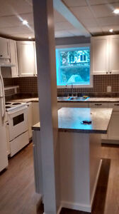 Newly Renovated Modern Basement Apartment NEVER RENTED MUST SEE!