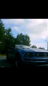 2006 Ford Mustang Pony Package V6