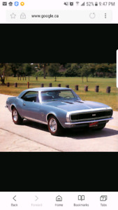 Looking for a muscle car