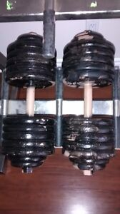 HEAVY DUMBBELLS 2 x 123 LBS. (trade or sale)
