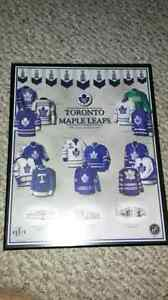 Toronto Maple Leaf Jersey Picture