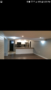 St. Albert basement suite for rent April 1st