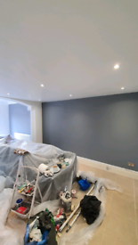 Painting/decorating/mould removal and treatment