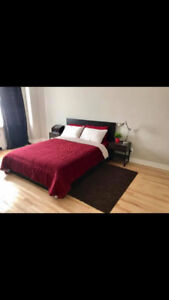 Classy one bedroom apt - McGill - Concordia - Full furnished