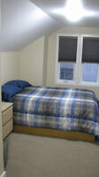 Attic Suite Available ASAP! Cozy and Comfortable