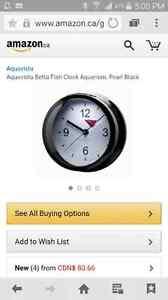 Betta fish tank / clock