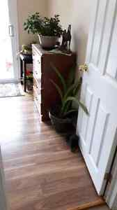550.00 per month   Avail now  Bedroom with kitchen use avail now Kingston Kingston Area image 2