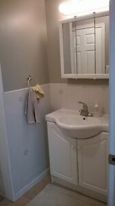 Lrg One Bedroom Basement Apart. avail. Feb 15 - Everything Incl. Cambridge Kitchener Area image 7