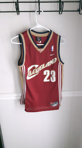 LeBron James Cleveland Cavaliers Away Jersey