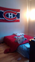 Beautiful room for rent in Nice appartement métro papineau