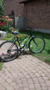 "Adult Ladies mountain bike 26"" tires"