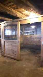 Horse stalls for rent Kawartha Lakes Peterborough Area image 3