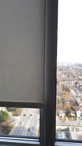 Light filtering solar roller blinds, new