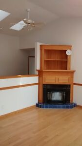 FULLY FUNCTIONAL CAST IRON GAS FIREPLACE INSERT