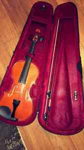 Violin with a hard case