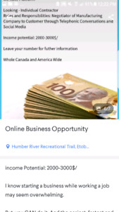 Online Business Opportunity