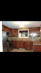 Beautiful 1 Bedroom Apartment (East End/ Airport Heights) St. John's Newfoundland image 3
