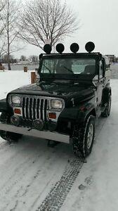 1994 Jeep Wrangler wrangler VUS