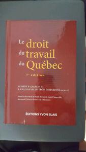 Droit du travail du Québec (2013) DRT1080