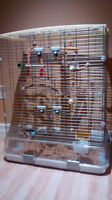 Larger vision bird cage