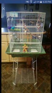 Bird Cage and Accessories  $80 nesting house also included