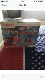 Marina seahorse children's aquarium
