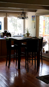 Dining table --- high top