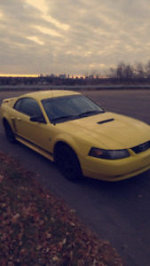 '02 GREAT COND* Mustang V6 2 door INCLUDES EXTRA TIRES & RIMS