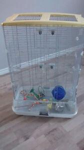 cage oiseaux et accessoires Saguenay Saguenay-Lac-Saint-Jean image 2