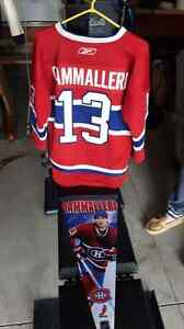 Mike Cammalleri Jersey+banner Kingston Kingston Area image 1
