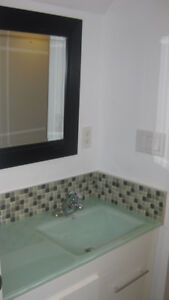 OCT FREE! FULLY RENOVATED 1 BDRM/BACHELOR SUITE-UTILITY INCLUDED