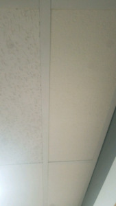 Wanted bp fissured cieling tiles 2 ft by 4ft