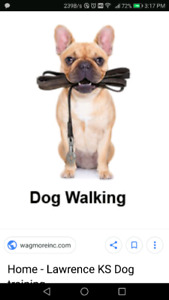 Do you need a dog walker? Ayer ave area!!