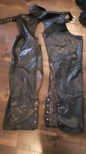Brown leather riding chaps