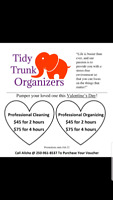 Cleaning and Organizing Services Valentine's Day Promotion