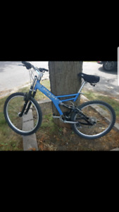 Man large Giant mountain bikes $180