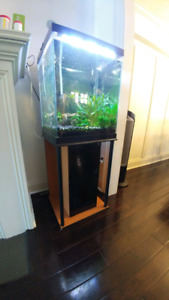 40 gallon tank with stand and canister filter, $220