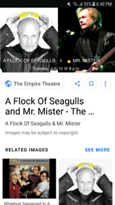 2 tickets for A Flock of Seagulls and Mr. Mister
