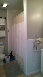 Lrg One Bedroom Basement Apart. avail. Feb 15 - Everything Incl. Cambridge Kitchener Area image 3