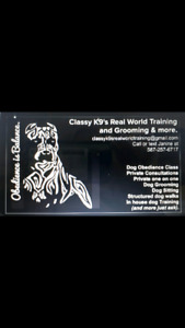 Classy k9s Real World Training and Dog Grooming and more