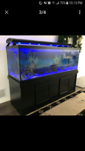 180 gallon stand only
