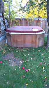 hot tub kijiji free classifieds in calgary find a job buy a car find a house or apartment. Black Bedroom Furniture Sets. Home Design Ideas