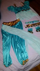 Ladies princess Jasmine Halloween costume
